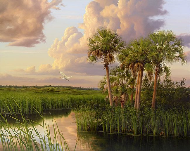 Afternoon on Tamiami