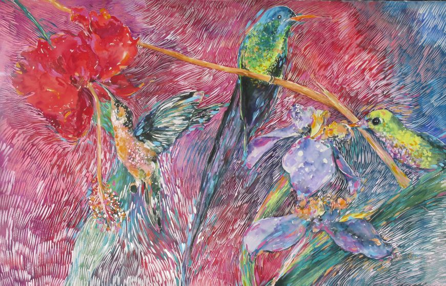 Memory of Hummingbirds