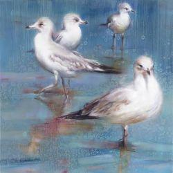 Seagull Rain Dance