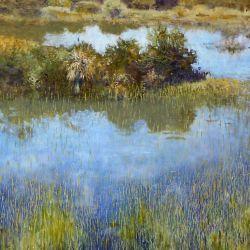 Glades Swamp