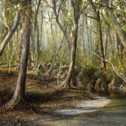Hadley Creek