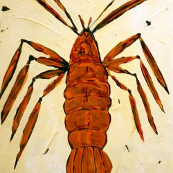 Florida Lobster