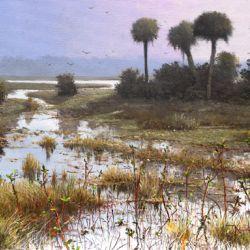 Estuary Wetland