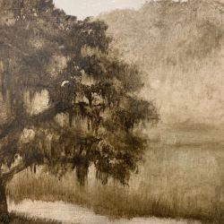 Tree in Sepia